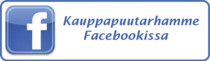 facebook ylitalo